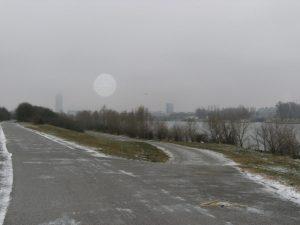 Auf der Donauinsel.