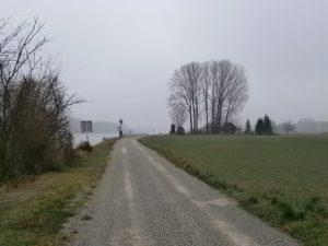 An der Donau zwischen Hainburg und Wolfsthal.