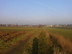 Nickelsdorf.