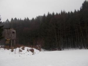 Beim Unteraschenbergerbach.