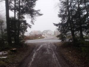 Aus dem Wald nach Ringlholz.