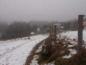 Bergab ins Kößbachtal.