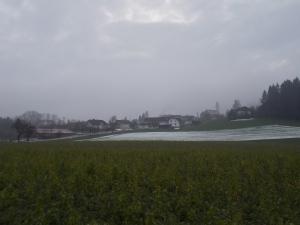 Schardenberg.