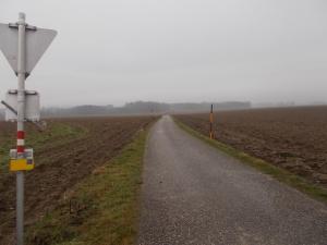Am Weg in den Lindetwald.