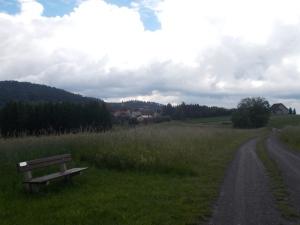 Gleich in Landsee.