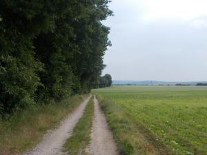 Am Blumauer Wald entlang.