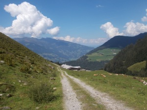 Nochmals der Ghf Alpenrose.