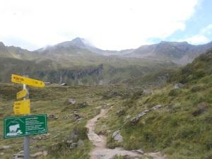 An der Wegkreuzung links zur Edelhütte, rechts zur Ahornbahnbergstation.