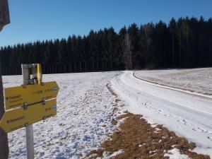 Zwischen Reickersdorf und Freistadt.
