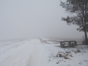 Wieder im Nebel. Die Rastbank reizte mich gerade nicht.